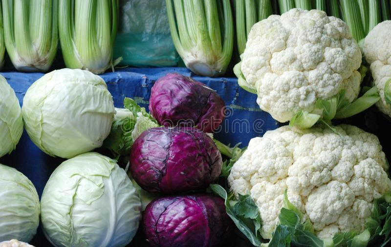 White and red cabbages stacked up in a farm market stock photo