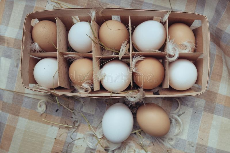 White and red chicken eggs royalty free stock photo