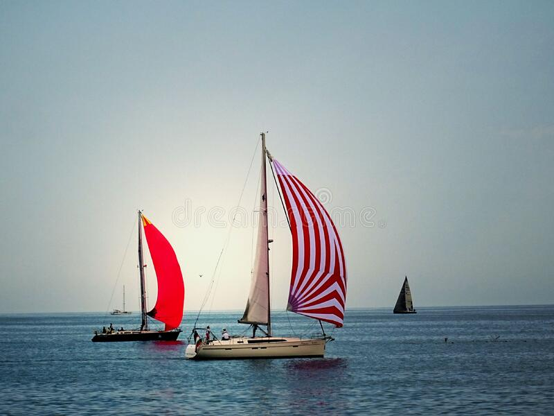 White And Red Cruiser Boats On Body Of Water During Daytime Free Public Domain Cc0 Image