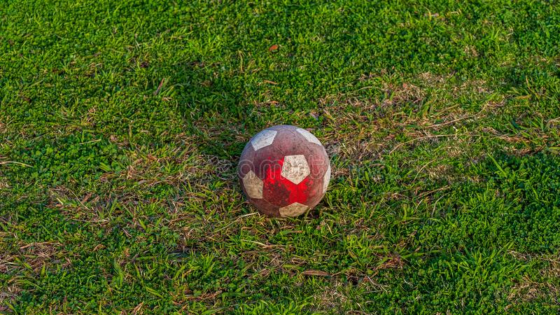 White and red soccer ball resting on the ground at a park in the golden hour sun.  royalty free stock photo