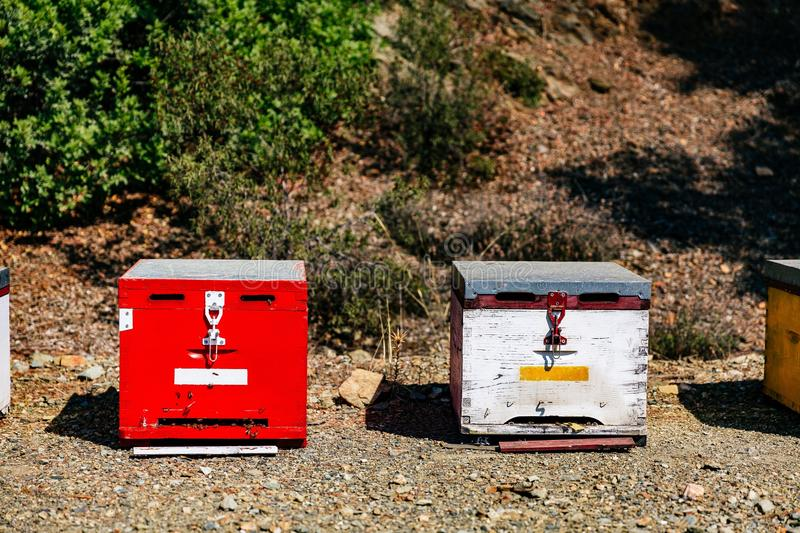 White and red wooden bee hives close-up in summertime. In Greece royalty free stock photos