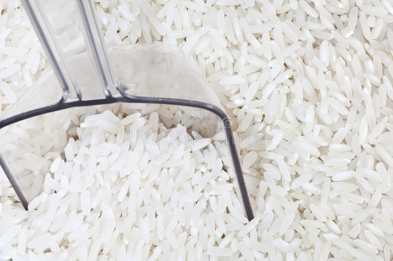 Download White Rice With Scoop Stock Photo - Image: 22055600