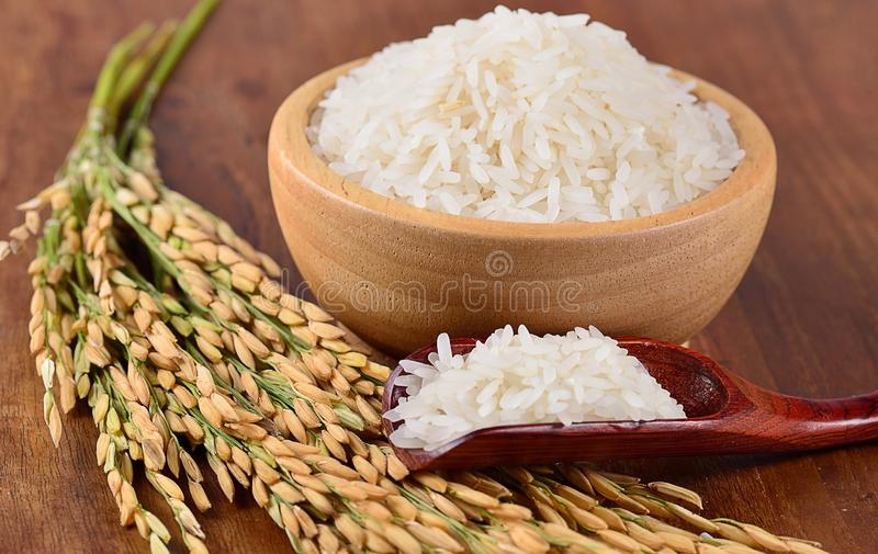 White rice on the wooden plate and rice plant , uncooked raw cereals.  stock photos