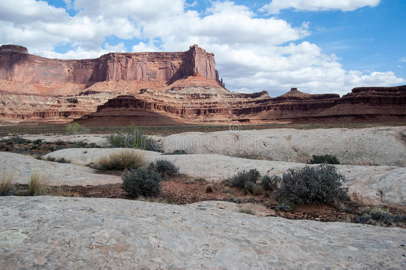 White rim view. Mesas and cayons over the green river in Canyonlands nation park Utah stock images
