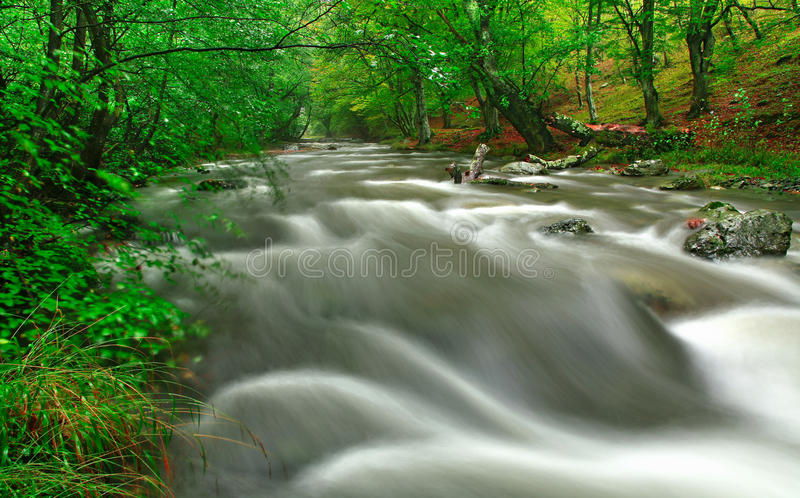 White river royalty free stock images