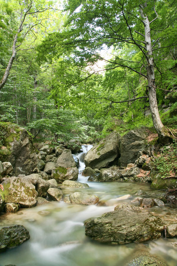 Download White river stock image. Image of color, pure, cascade - 15217519