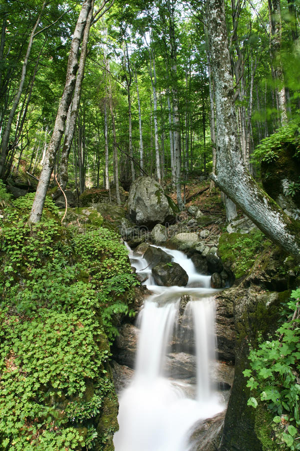 Download White river stock image. Image of waterfall, mountain - 15223055
