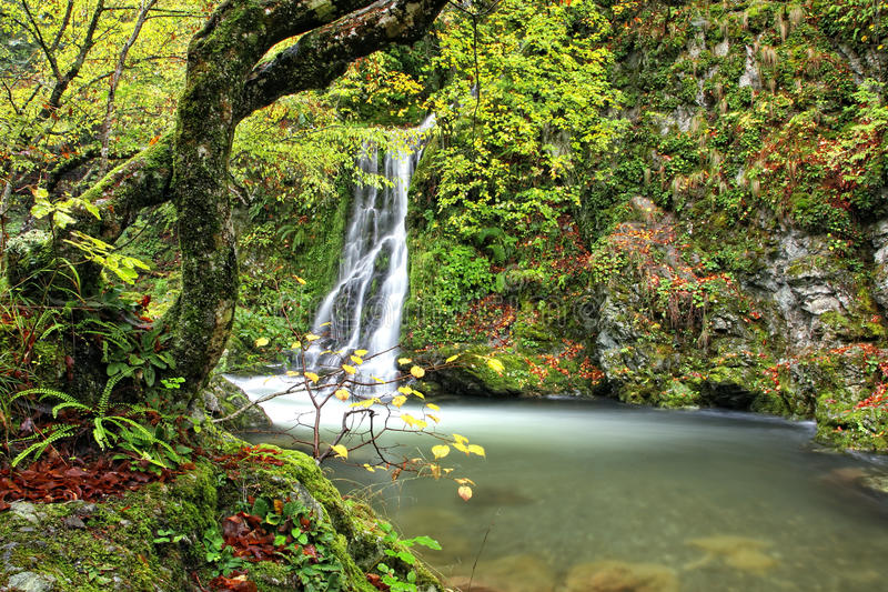 Download White river stock photo. Image of mountine, stone, fall - 17283412
