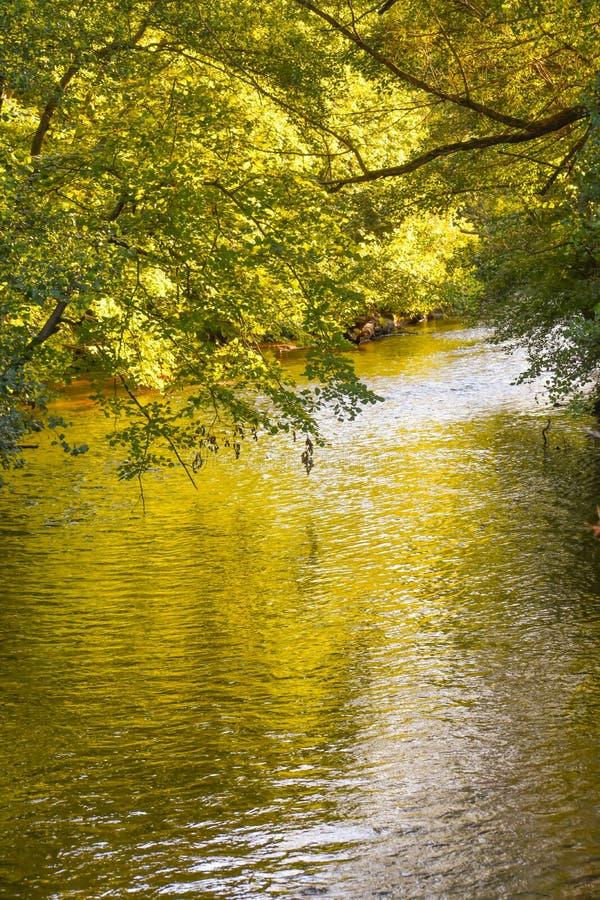 White River County Park - Lake Geneva, WI stock images