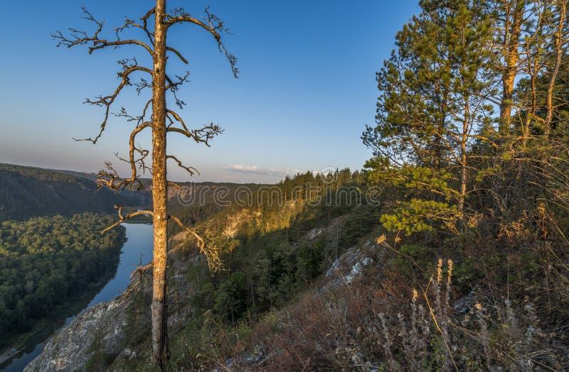 White River i de Ural bergen royaltyfria foton