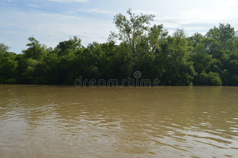 White River Indianapolis Indiana Muddy Bank stockfotos