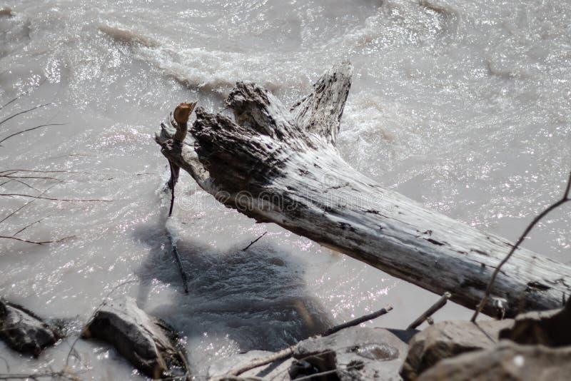 White River que flui perto das montanhas foto de stock