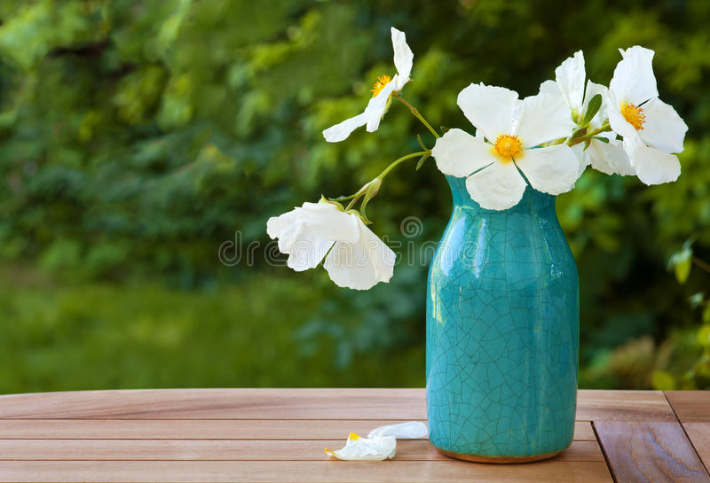 White rock rose blossoms in a blue crazed vase on wooden table stock download white rock rose blossoms in a blue crazed vase on wooden table stock photo mightylinksfo Gallery