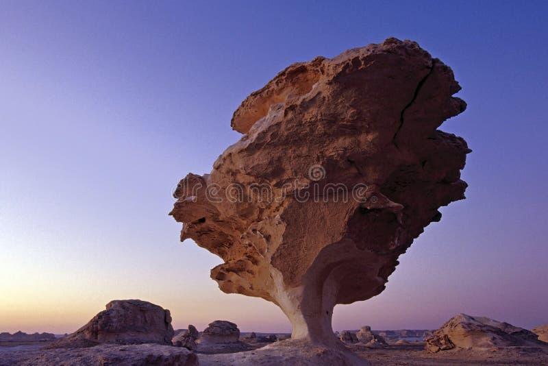 Download White rock in Sunrise stock photo. Image of egypt, mushroom - 5877084