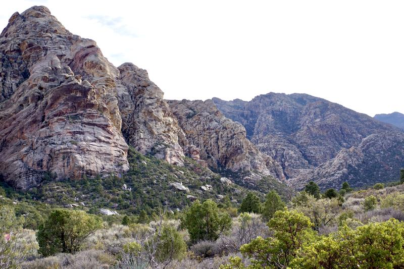 White Rock, Willow Springs, Red Rock Conservation Area, Nevada, USA. Along the hiking trails on the White Rock Loop in Willow Springs, Red Rock Conservation Area stock images