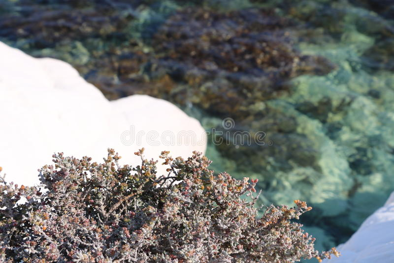 White rocks in beautiful Cyprus royalty free stock photo