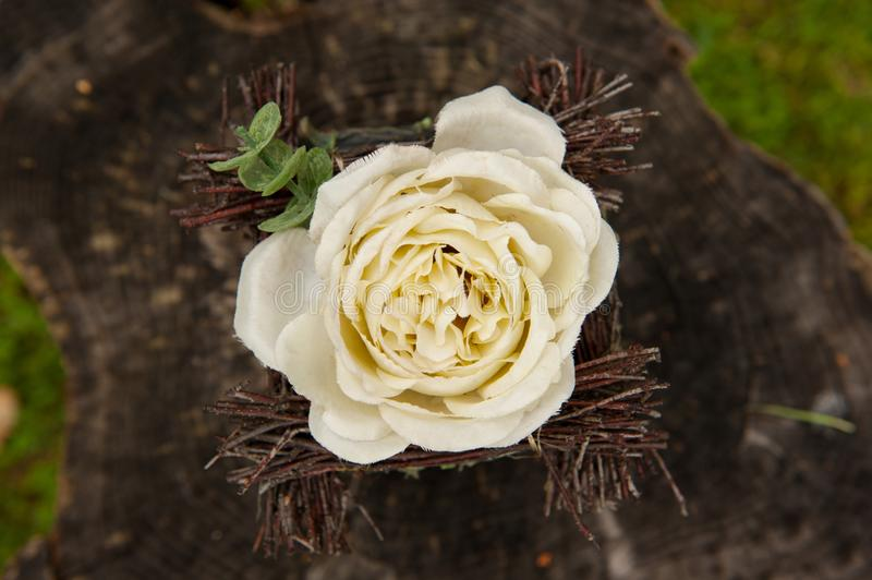 White rose flower on a brown wood wedding decoration stock photo white rose as wedding decoration on a brown wood flower and decoration details junglespirit Choice Image
