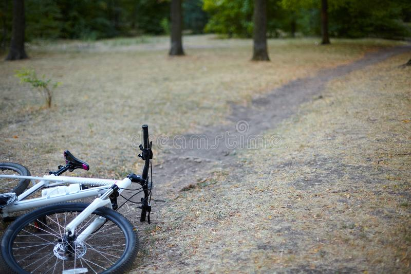 White and rose bicycle lays on the abandoned path in a park or forest in a lovely autumn day. Nobody is around, calm and relax amb stock photos