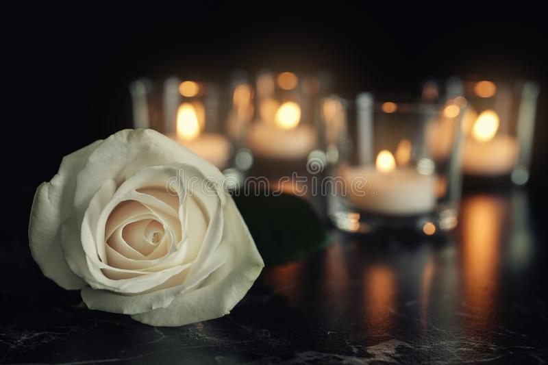 White rose and blurred burning candles on table stock photo