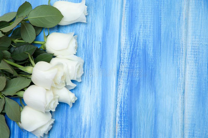 White Rose. A bouquet of delicate roses on a wooden blue background. Place for text, close-up. Romantic background for spring stock photos