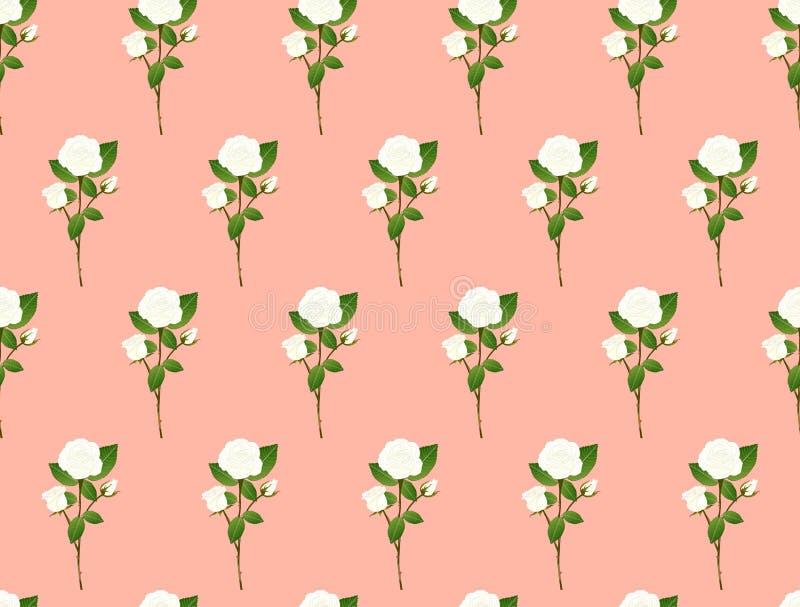 White Rose Bouquet on Orange Pink Background. Vector Illustration stock illustration
