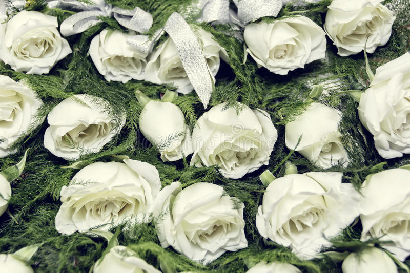 download white rose boutonniere stock photo image 46793123 - Garden Rose Boutonniere