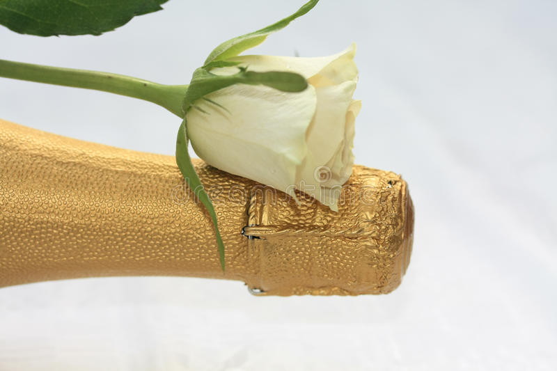 Download White Rose On A Champagne Bottle Stock Photo - Image of petals, color: 12317644