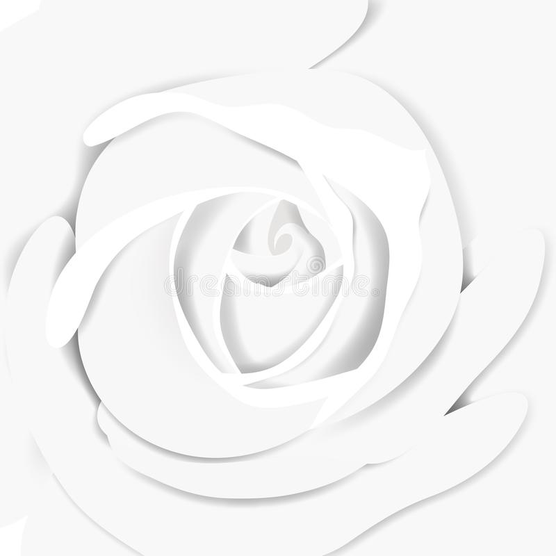 White rose close-up background, paper cut. White rose close-up background, paper craft/paper cut style vector illustration