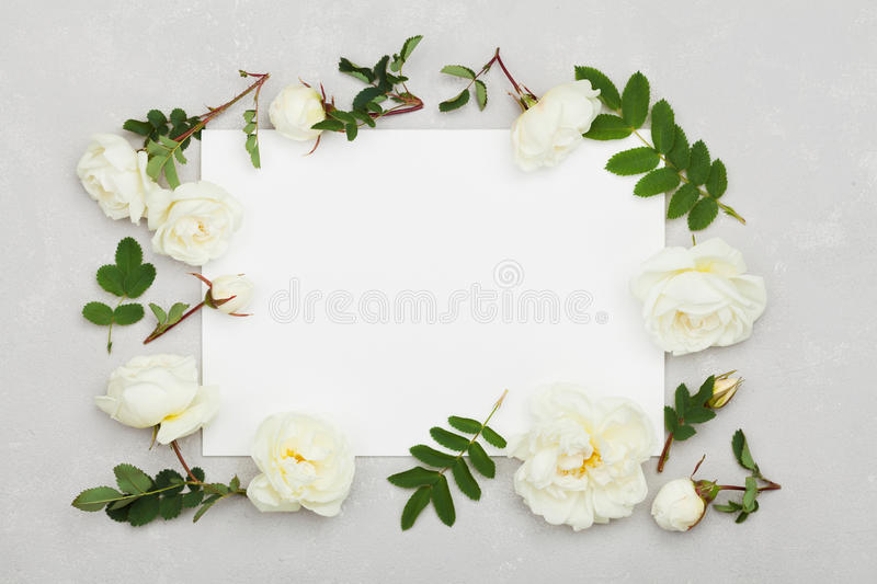 White rose flowers, green leaves and clean paper sheet on light gray background from above, beautiful floral pattern, flat lay royalty free stock photography