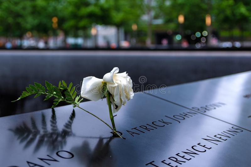 New York - 9/11 Memorial. A white rose of memory on the 9/11 memorial in honor of the victims stock photos