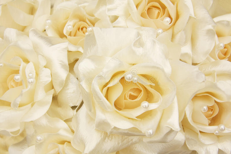 Download White Roses Stock Photos - Image: 17113833