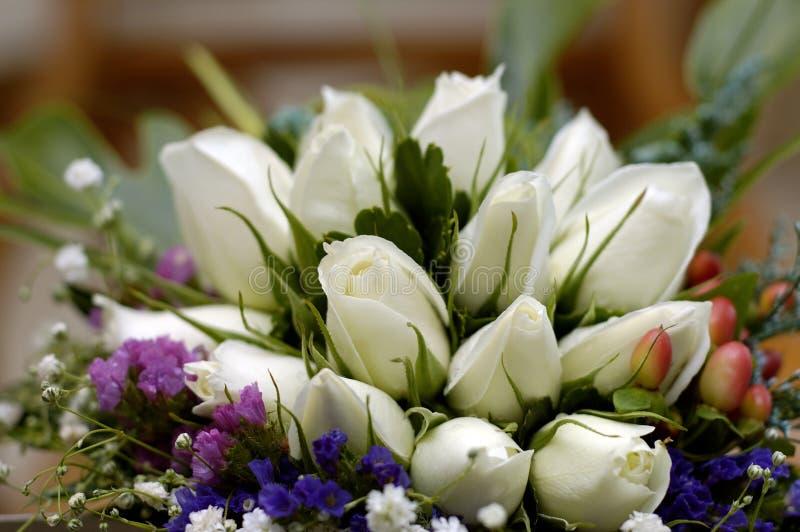 White roses royalty free stock photo