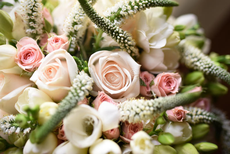 White roses. A bouquet of white roses stock images