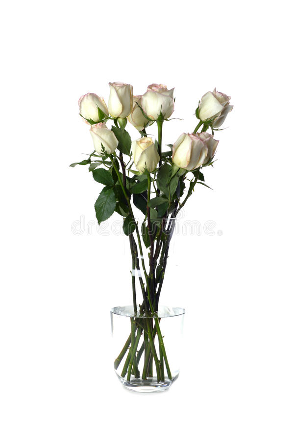 Free White Roses In Vase On White Stock Photography - 14481242