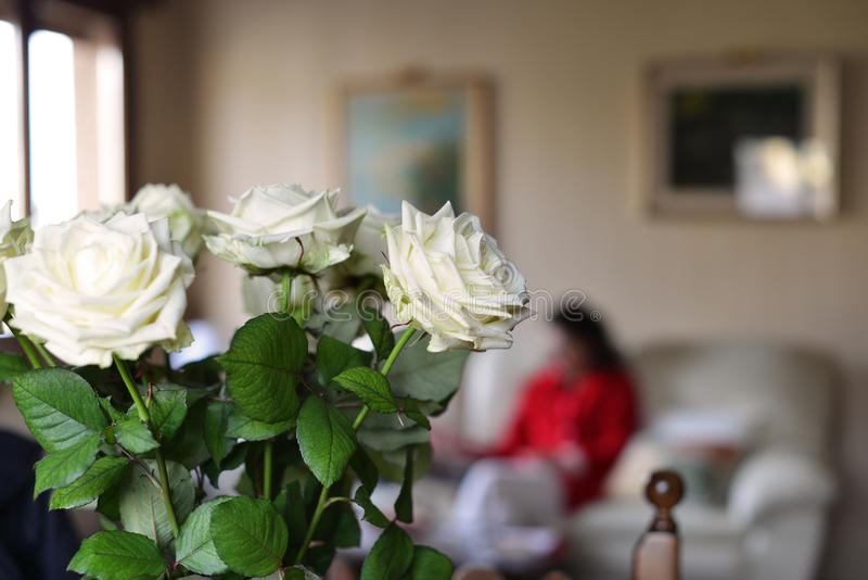White Roses And Living Room Stock Image