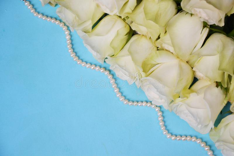 White roses with pearls on blue background royalty free stock photo