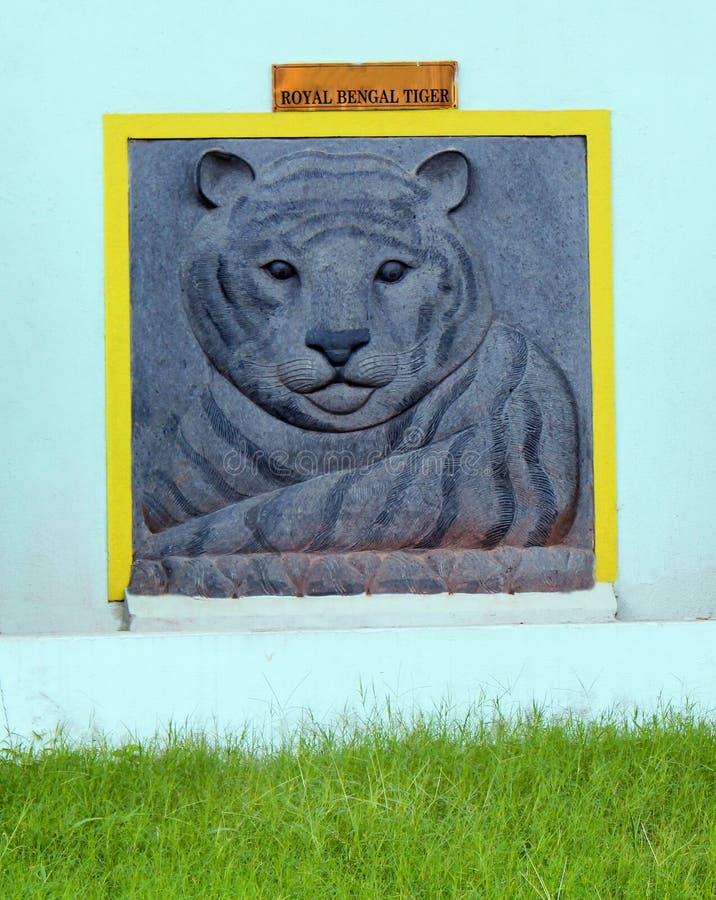 White Royal Indian Bengal Tiger engraving stock photo