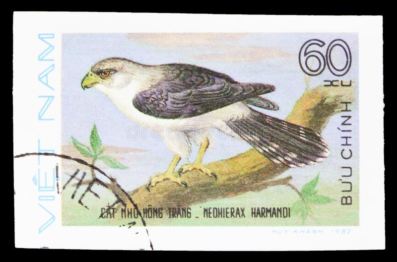 White-rumped Falcon (Neohierax harmandi), Birds of Prey serie, circa 1982. MOSCOW, RUSSIA - SEPTEMBER 26, 2018: A stamp printed in Vietnam shows White-rumped royalty free stock image