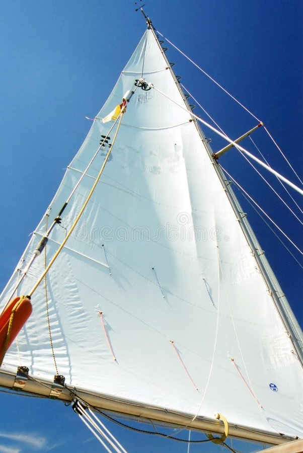 White   S Sail. Obrazy Stock