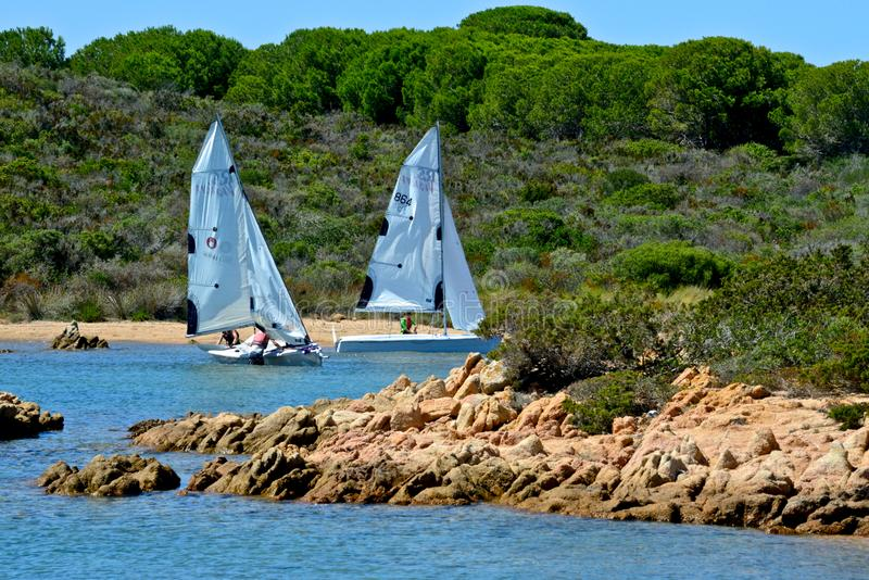 White sail boats with people learning to sail in the blue sea surrounded by nature stock photo