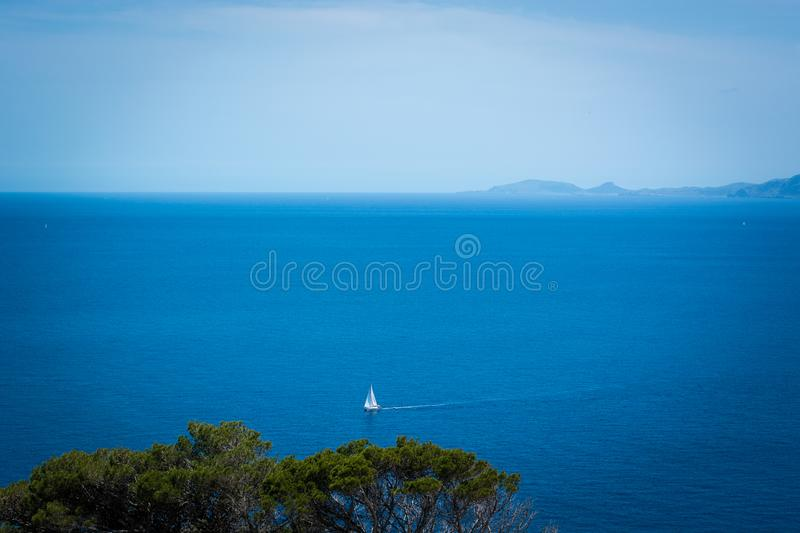 White Sailboat on Body of Water stock photos