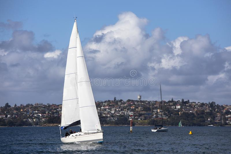 White sailboat with cityscape as background under blue sky royalty free stock image
