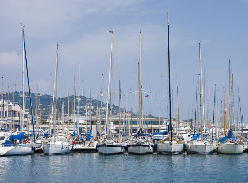 White Sailboats on Blue Water in Marina stock image