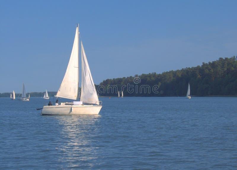 White sailing royalty free stock image