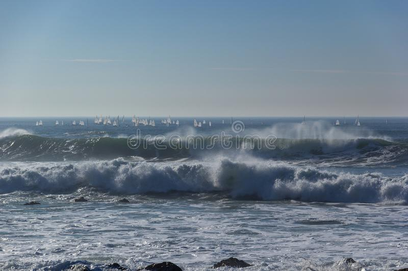 White Sails of Windsurfers on Waves Portugal Coast. Of Atlantic Ocean royalty free stock photos