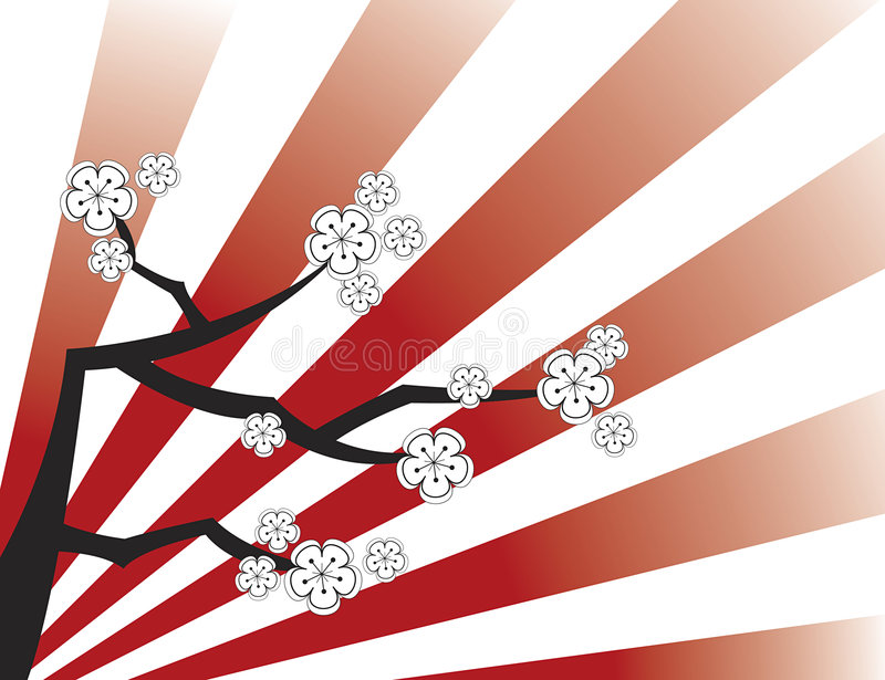 White sakura on red stripes royalty free stock photo