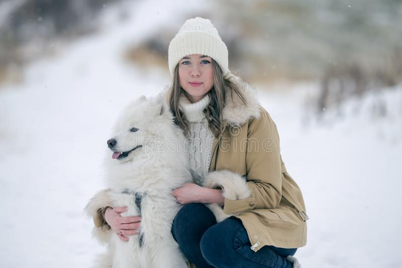 A young girl walks in winter with a white Samoyed dog in a snowy meadow in the forest royalty free stock photography