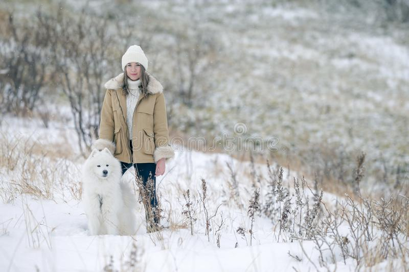 A young girl walks in winter with a white Samoyed dog in a snowy meadow in the forest royalty free stock image