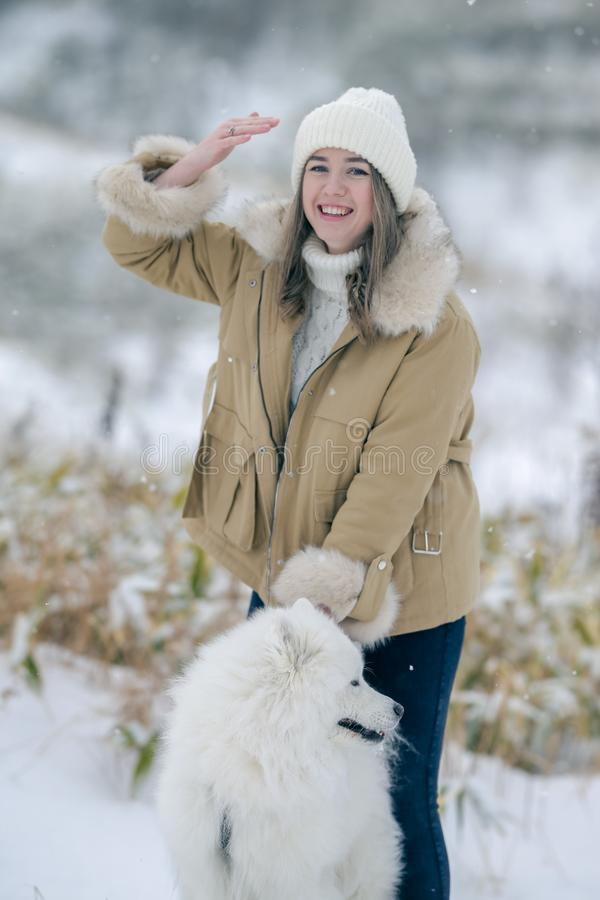 A young girl walks in winter with a white Samoyed dog in a snowy meadow in the forest stock photos
