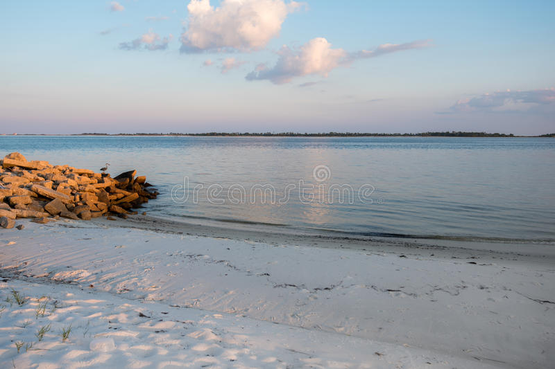 White Sand Beach in Florida with Great Blue Heron and Ocean stock photos